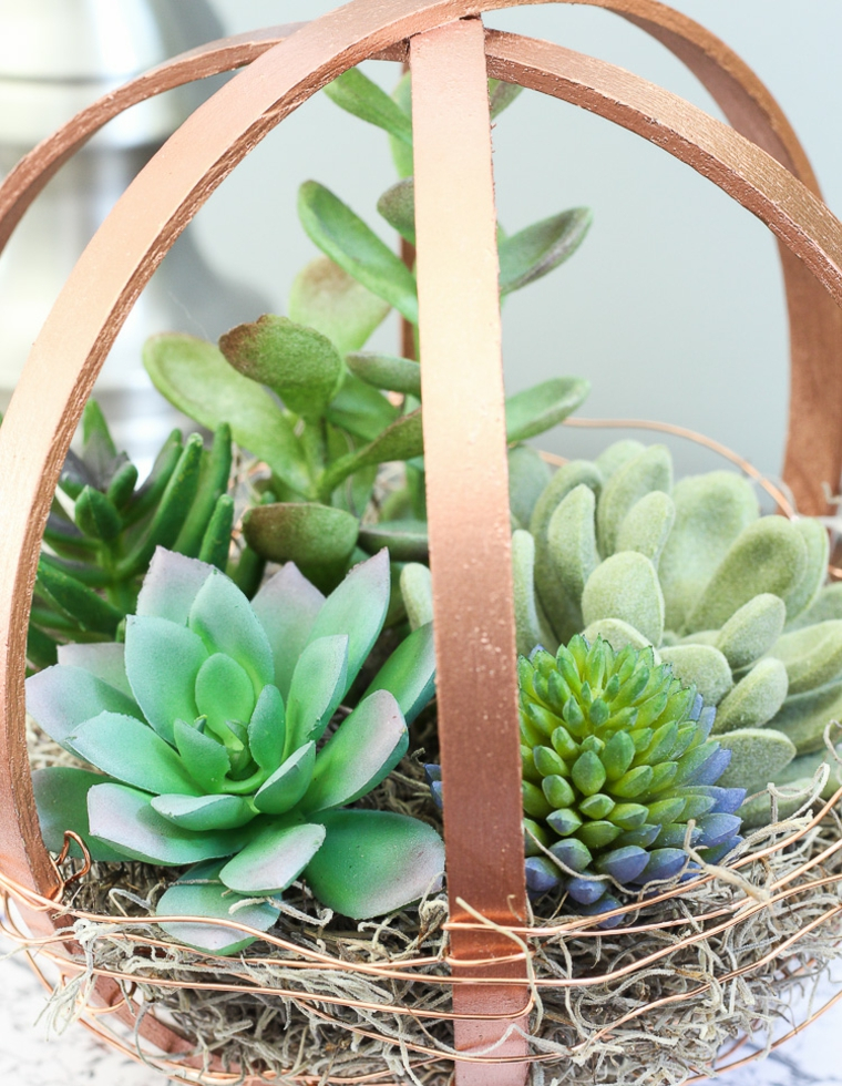 succulents-terrarium-form-basket