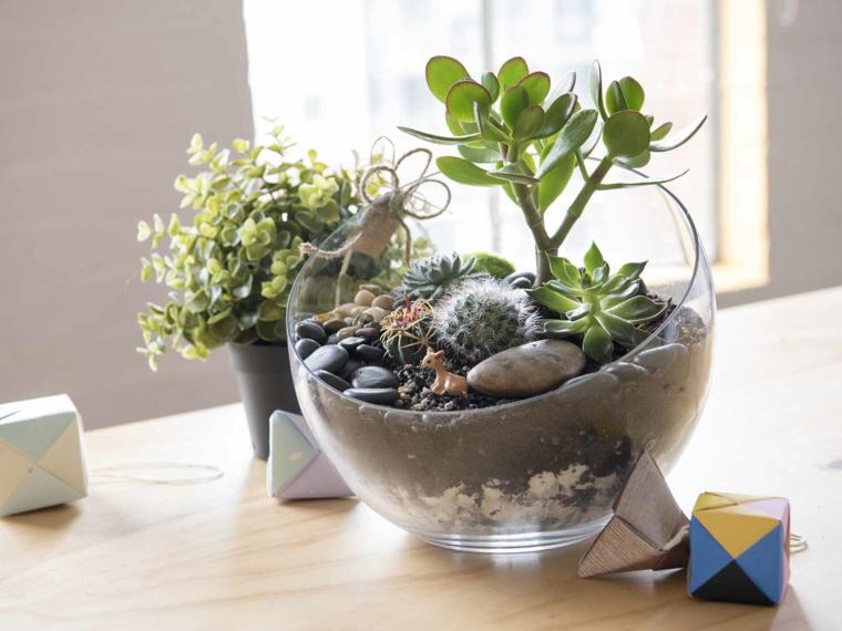 plants-succulents-ideas-terrarium