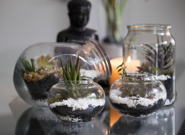 terrarium-water-options-house-fashion