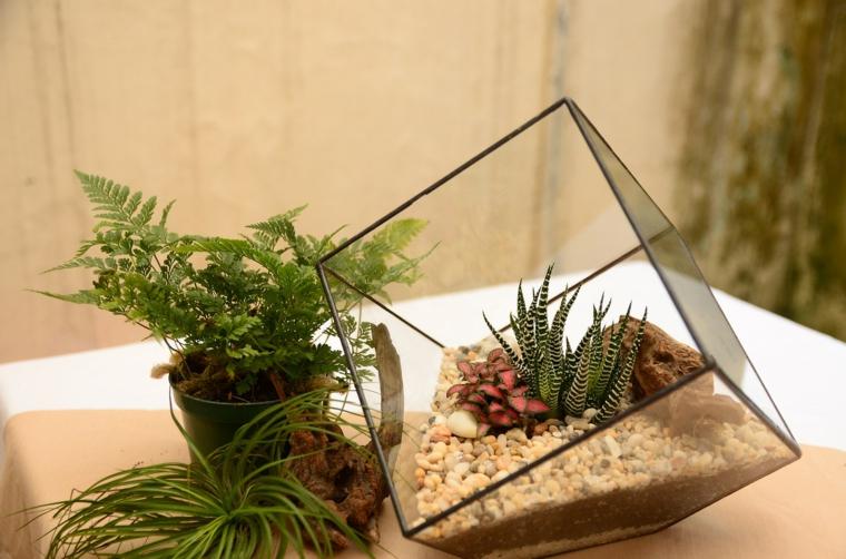 terrarium-great-original-form