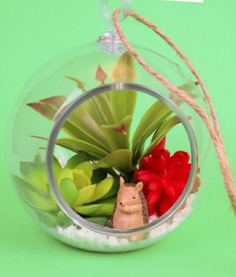 terrarium-plants-succulents-ideas