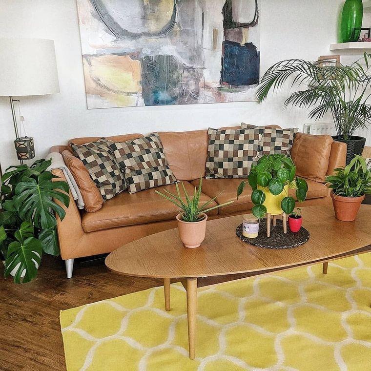 interior decoration plants