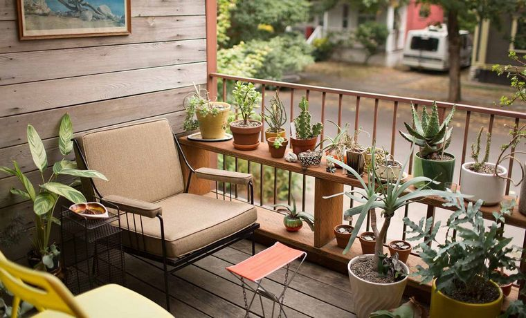 creative ideas balcony plants