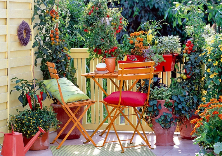 creative ideas colorful plants