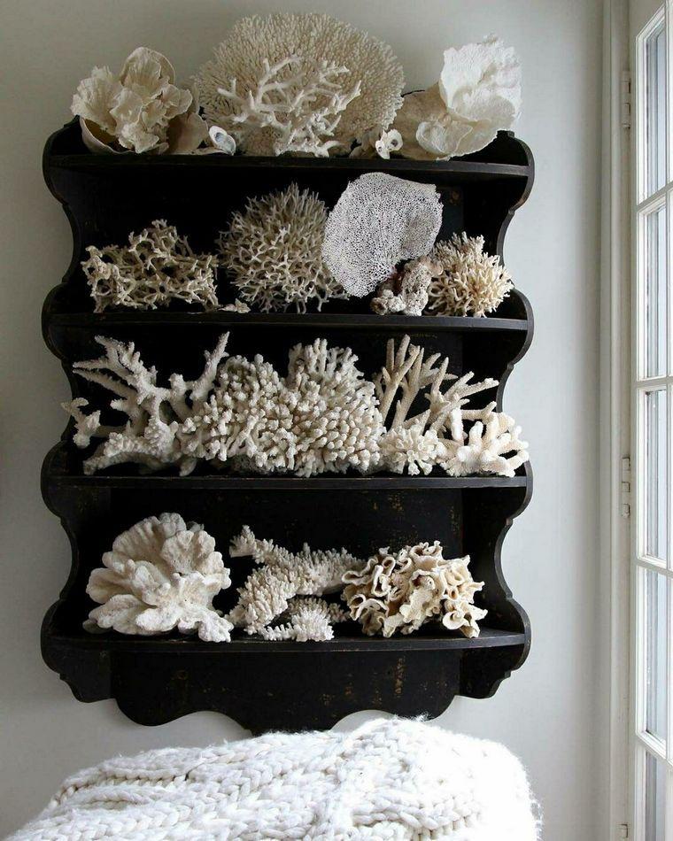 conchas marinas exhibicion