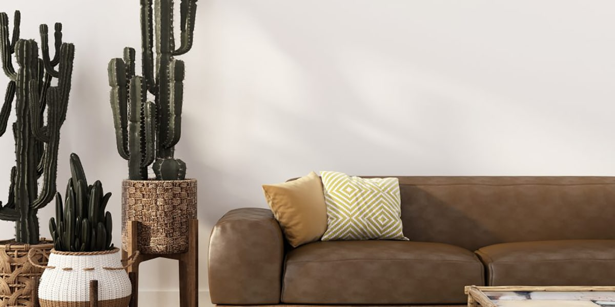 Decoration with cactus
