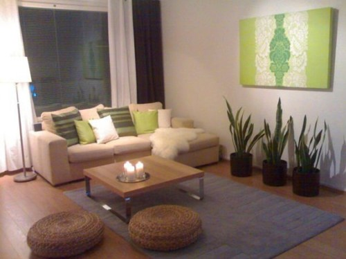 rooms-decorated-with-plants-4