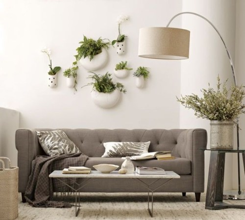rooms-decorated-with-plants-2