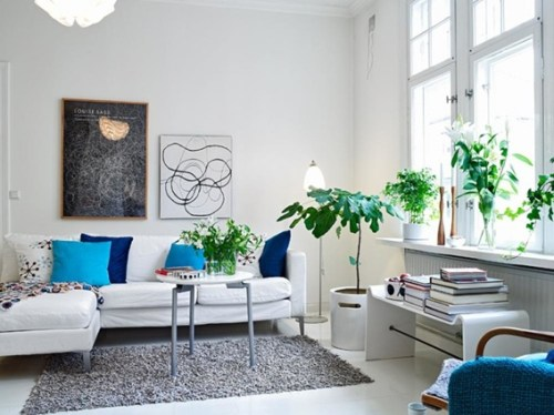 rooms-decorated-with-plants